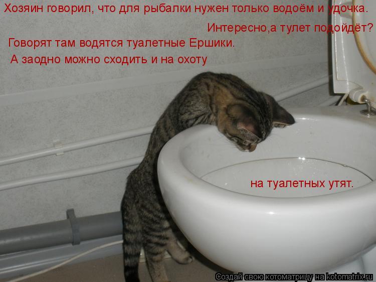 Котоматрица: Хозяин говорил, что для рыбалки нужен только водоём и удочка. Интересно,а тулет подойдёт? Говорят там водятся туалетные Ершики. А заодно мож