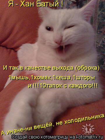 Котоматрица: Я - Хан Батый ! И так,в качестве выхода (оброка) 1мышь,1хомяк,1кеша,1шторы и !!!10тапок с каждого!!! А иначе-ни вещёй, не холодильника