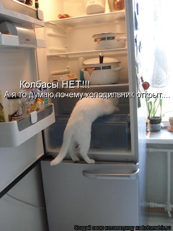 Колбасы НЕТ!!! А я то думаю,почему холодильник открыт....