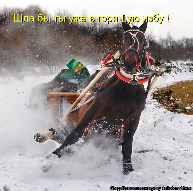 http://kotomatrix.ru/images/lolz/2011/03/06/844047.jpg