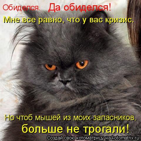 Котоматрица: Обиделся… Да обиделся!   Мне все равно, что у вас кризис. Но чтоб мышей из моих запасников,   больше не трогали!