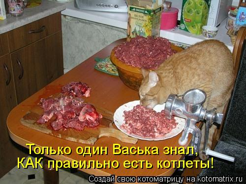 Котоматрица: Только один Васька знал, КАК правильно есть котлеты!