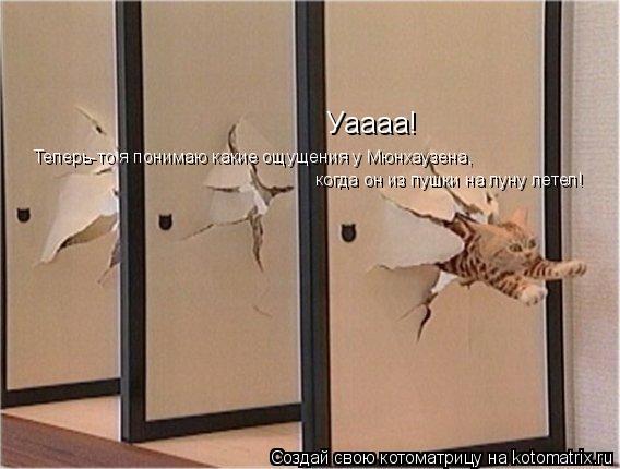 Котоматрица: Уаааа!  Теперь-то я понимаю какие ощущения у Мюнхаузена, когда он из пушки на луну летел!