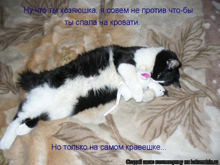 Котоматрица: Ну что ты хозяюшка, я совем не против что-бы ты спала на кровати. Но только на самом краеешке...