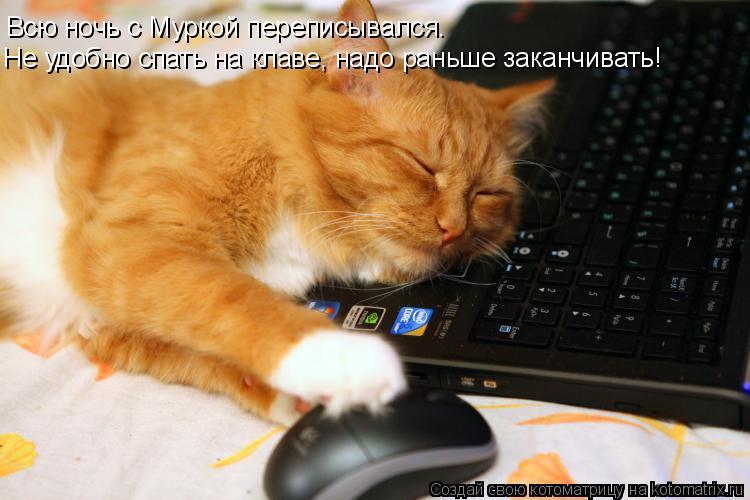 Котоматрица: Всю ночь с Муркой переписывался. Не удобно спать на клаве, надо раньше заканчивать!