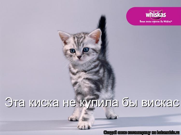 visshie-kiski
