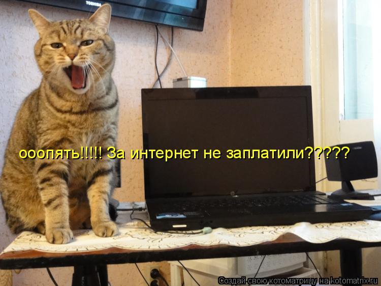 Котоматрица: ооопять!!!!! За интернет не заплатили?????