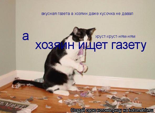 Котоматрица: вкусная газета а хозяин даже кусочка не давал  а хозяин ищет газету хруст-хруст-ням-ням
