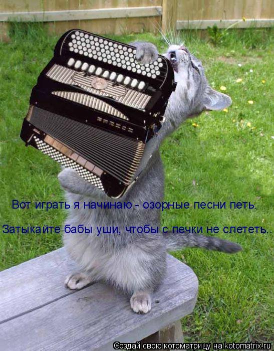 Котоматрица: Вот играть я начинаю - озорные песни петь. Затыкайте бабы уши, чтобы с печки не слететь..