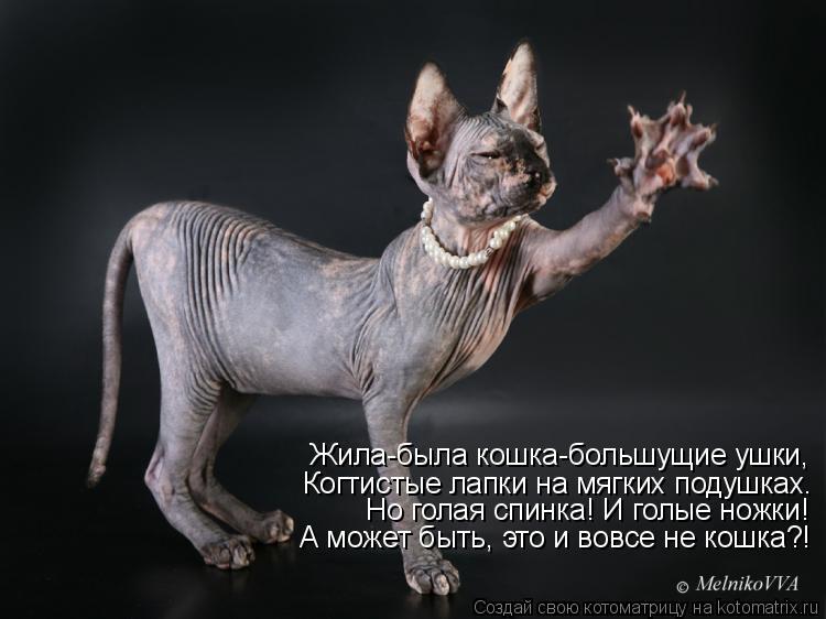 Котоматрица - Жила-была кошка-большущие ушки, Когтистые лапки на мягких подушках. Но