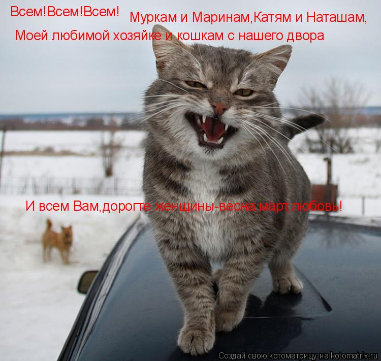 Котоматрица: Всем!Всем!Всем! Муркам и Маринам,Катям и Наташам, Моей любимой хозяйке и кошкам с нашего двора И всем Вам,дорогте женщины-весна,март,любовь!