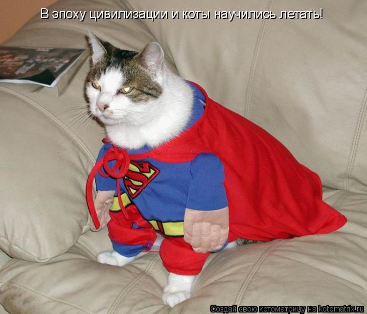 Котоматрица: В эпоху цивилизации и коты научились летать!
