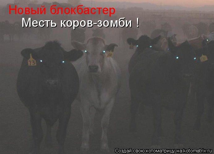 Котоматрица: Новый блокбастер Месть коров-зомби !
