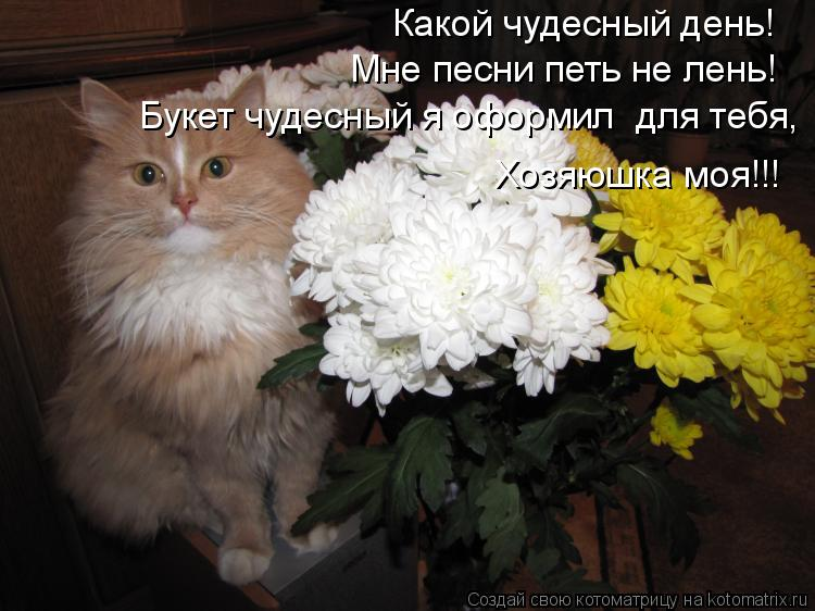 Котоматрица: Какой чудесный день! Мне песни петь не лень! Букет чудесный я оформил  для тебя, Хозяюшка моя!!!