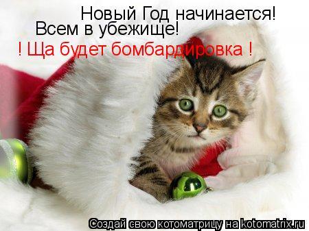 Котоматрица: Новый Год начинается! Всем в убежище! ! Ща будет бомбардировка !