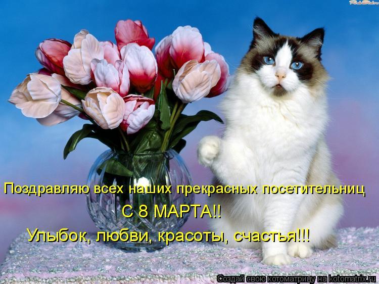 Котоматрица: Поздравляю всех наших прекрасных посетительниц С 8 МАРТА!! Улыбок, любви, красоты, счастья!!!