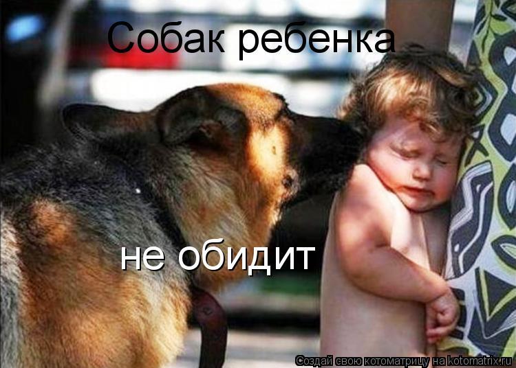 Котоматрица: Собак ребенка не обидит