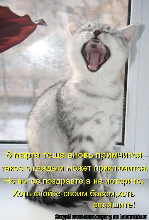 Котоматрица: 8 марта теща вновь примчится, такое с каждым может приключится. Но вы ее поздравте,а не истерите, Хоть спойте своим басом,хоть спляшите!
