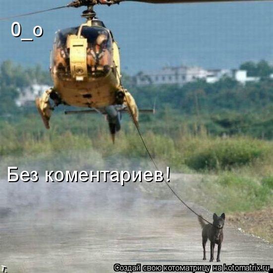 Котоматрица: 0_о  Без коментариев!