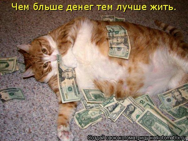 Котоматрица: Чем бльше денег тем лучше жить.