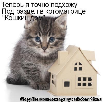 """Котоматрица: Теперь я точно подхожу  Под раздел в котоматрице """"Кошкин дом""""!"""