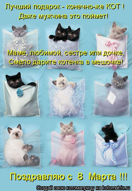 Котоматрица: Лучший подарок - конечно-же КОТ ! Даже мужчина это поймет! Маме, любимой, сестре или дочке, Смело дарите котенка в мешочке! Поздравляю с  8  Мар