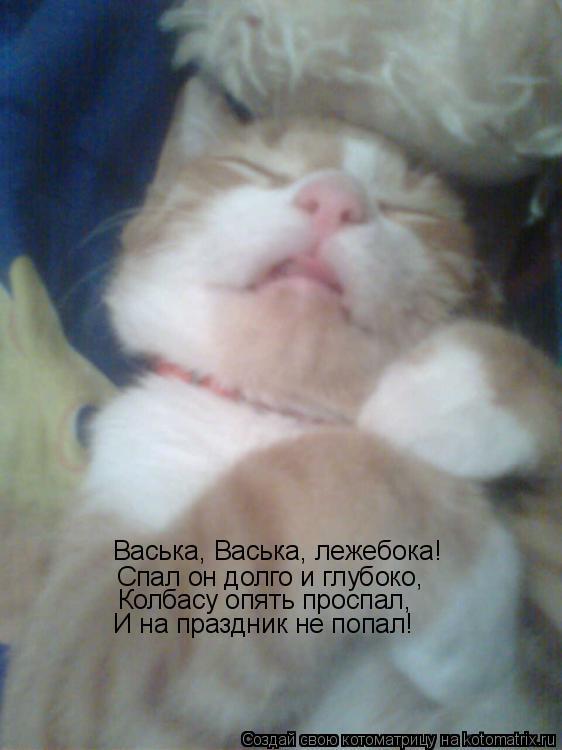 Котоматрица: Васька, Васька, лежебока! Спал он долго и глубоко, Колбасу опять проспал, И на праздник не попал!