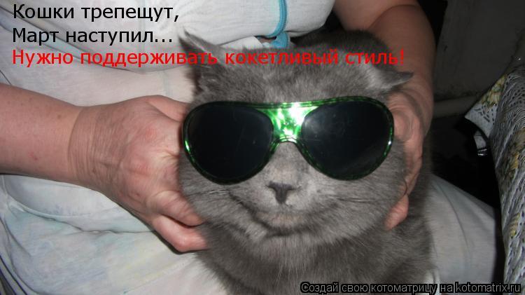 Котоматрица: Кошки трепещут, Март наступил... Нужно поддерживать кокетливый стиль!