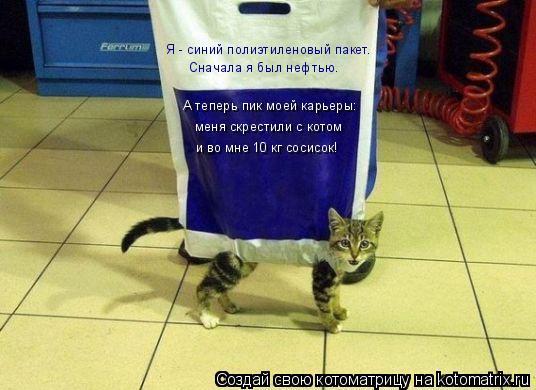 Котоматрица: Я - синий полиэтиленовый пакет. Сначала я был нефтью. А теперь пик моей карьеры: меня скрестили с котом и во мне 10 кг сосисок!