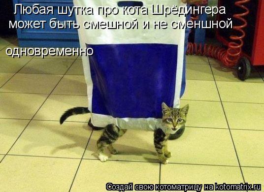 Котоматрица: Любая шутка про кота Шрёдингера  может быть смешной и не сменшной одновременно