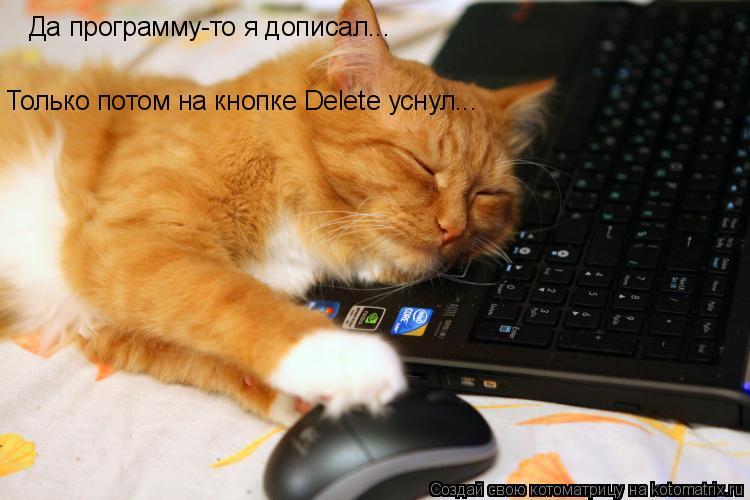 Котоматрица: Да программу-то я дописал... Только потом на кнопке Delete уснул...