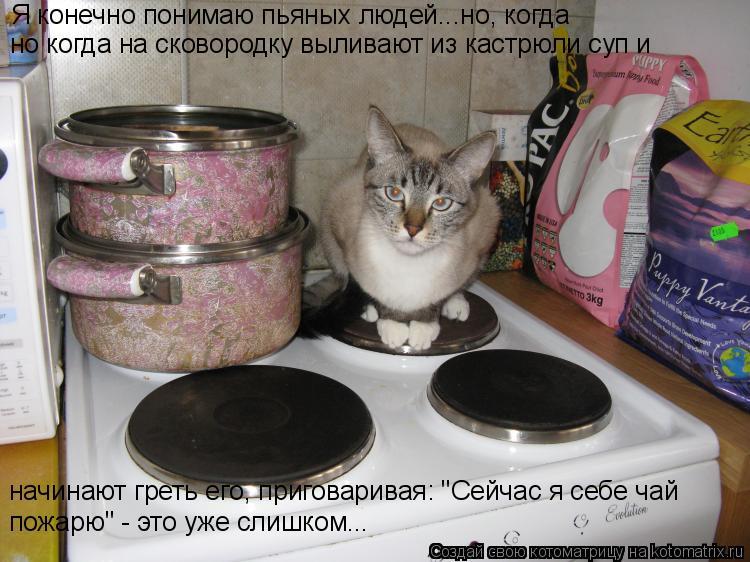 """Котоматрица: Я конечно понимаю пьяных людей...но, когда  но когда на сковородку выливают из кастрюли суп и  начинают греть его, приговаривая: """"Сейчас я себ"""