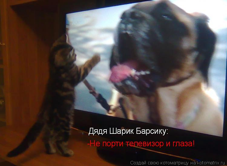 Котоматрица: Дядя Шарик Барсику: Дядя Шарик Барсику: -Не порти телевизор и глаза!