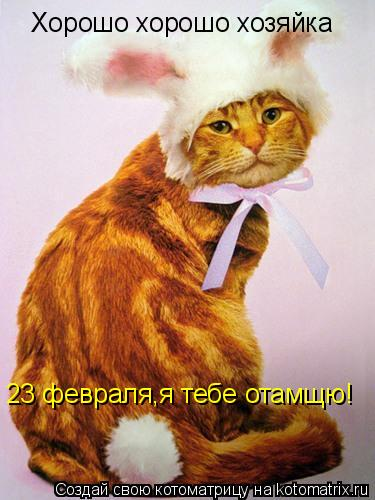 Поздравление хозяйке от кошки