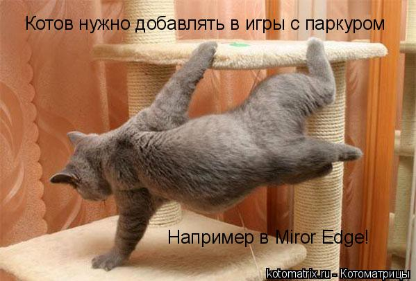 Котоматрица: Котов нужно добавлять в игры с паркуром Например в Miror Edge!
