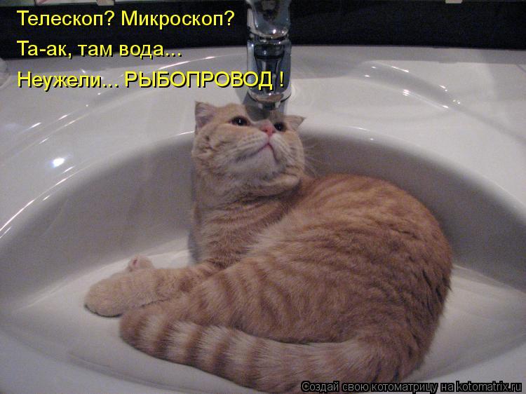 Телескоп? Микроскоп?  Та-ак, там вода...  Неужели... РЫБОПРОВОД !