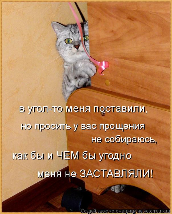 Котоматрица: в угол-то меня поставили, но просить у вас прощения не собираюсь, как бы и ЧЕМ бы угодно  меня не ЗАСТАВЛЯЛИ!