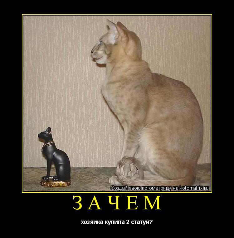 Котоматрица: Зачем хозяйка купила 2 статуи?
