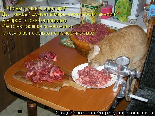Котоматрица: Что вы думаете я делаю?! Да....каждый думает в меры своей воспитанности А я просто хозяйке помогаю Место на тарелке освобождаю Мяса-то вон ско