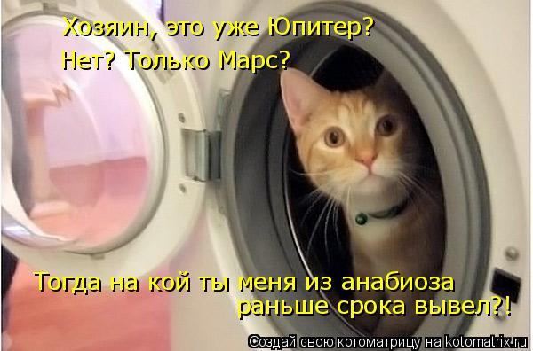 Котоматрица: Хозяин, это уже Юпитер? Нет? Только Марс? Тогда на кой ты меня из анабиоза  раньше срока вывел?!