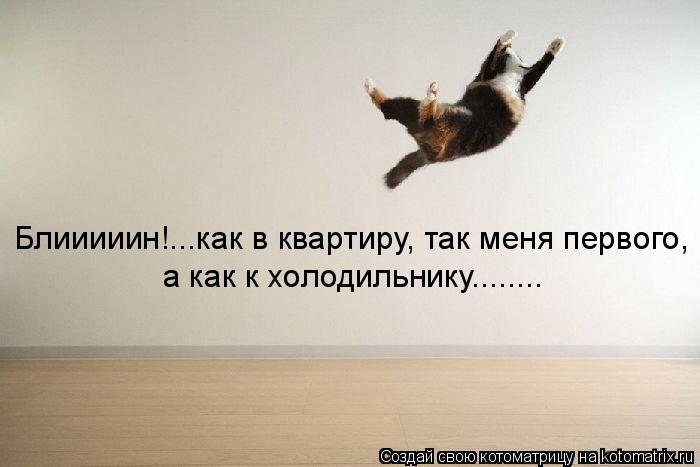 Котоматрица: Блииииин!...как в квартиру, так меня первого, а как к холодильнику........