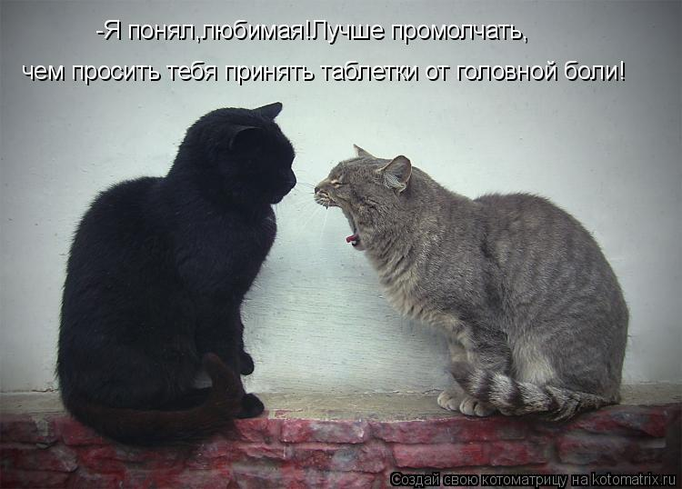Котоматрица: -Я понял,любимая!Лучше промолчать, чем просить тебя принять таблетки от головной боли!