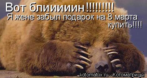 Котоматрица: Вот блииииин!!!!!!!!! Я жене забыл подарок на 8 марта Я жене забыл подарок на 8 марта купить!!!!
