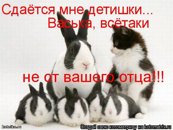 Котоматрица: Сдаётся мне детишки... Васька, всётаки  не от вашего отца!!!