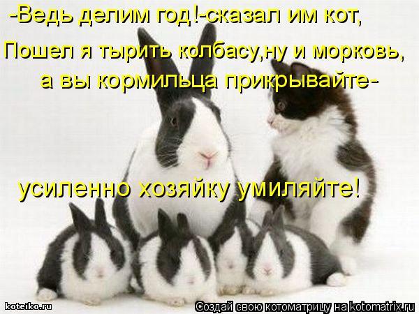 Котоматрица: а вы кормильца прикрывайте- Пошел я тырить колбасу,ну и морковь, -Ведь делим год!-сказал им кот, усиленно хозяйку умиляйте!