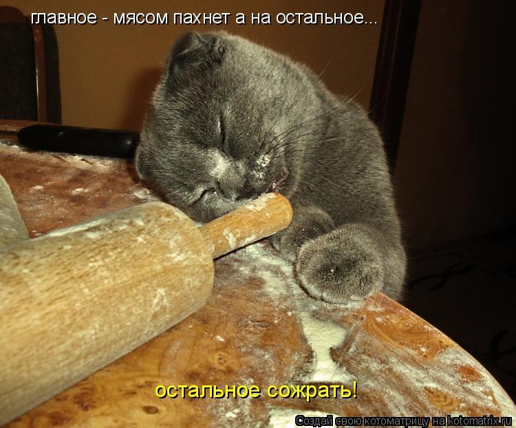 Котоматрица: главное - мясом пахнет а на остальное... остальное сожрать!