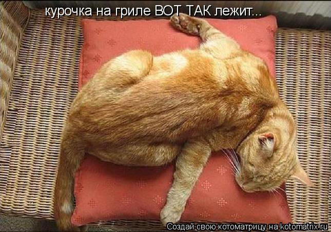 Котоматрица: курочка на гриле ВОТ ТАК лежит...