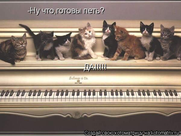 Котоматрица: -Ну что,готовы петь? ДА!!!!!