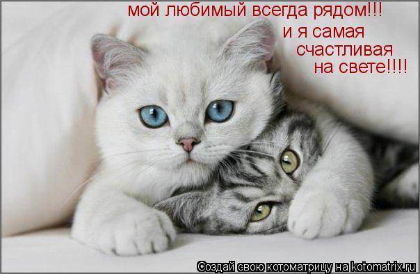 Котоматрица: мой любимый всегда рядом!!!  и я самая  счастливая на свете!!!!