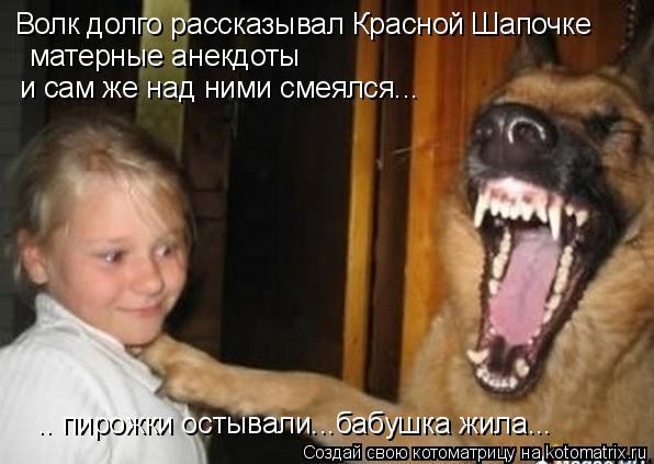 Котоматрица: матерные анекдоты  и сам же над ними смеялся... Волк долго рассказывал Красной Шапочке .. пирожки остывали...бабушка жила...